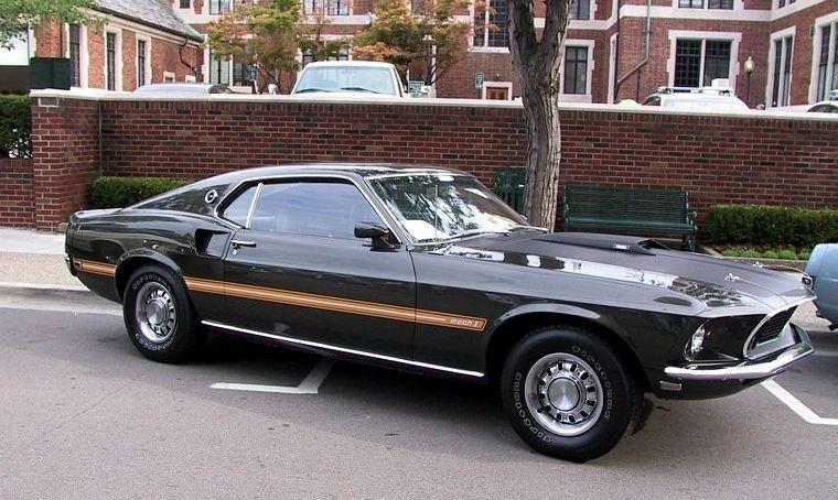 1969 Ford Mustang Mach 1 Car Picture